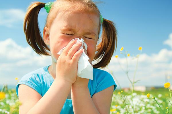 Лятото – сезонът на алергичния ринит, бронхиалната астма и инсект алергиите