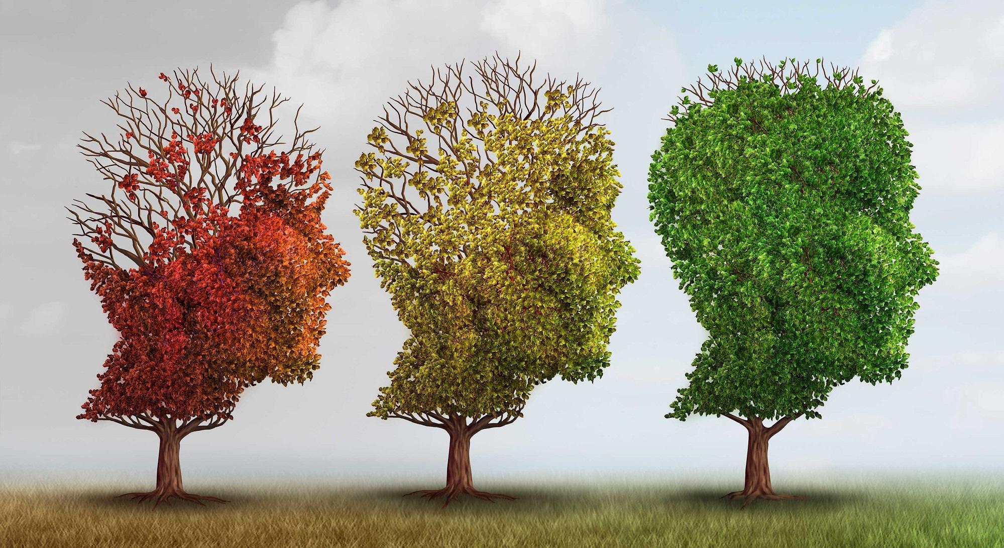 Диабетът тип 2 и болестта на Алцхаймер са свързани