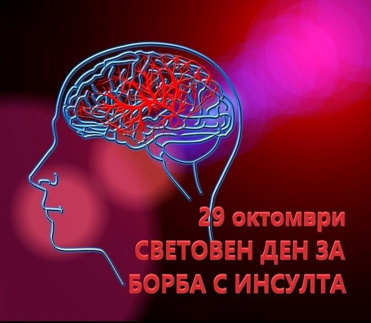 29 октомври – Световен ден за борба с мозъчния инсулт